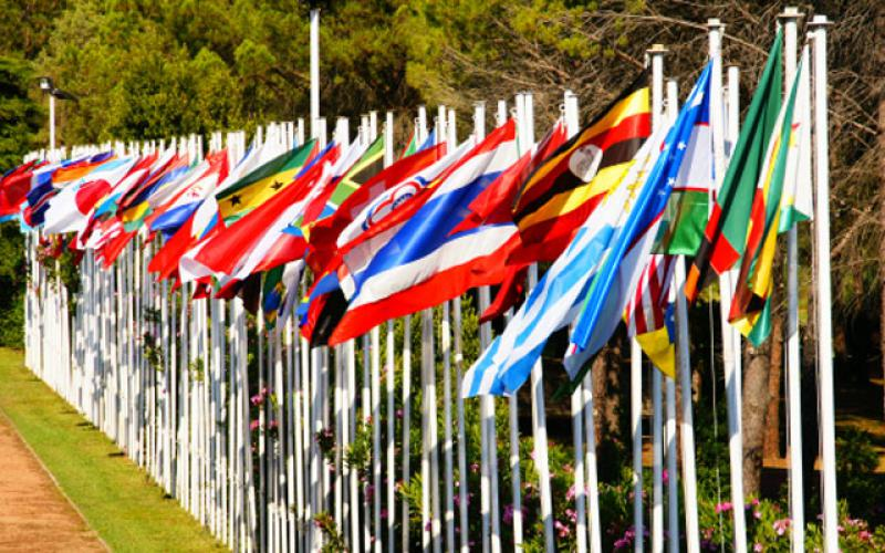 image of 50 international flags